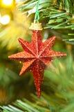 Shinny Weihnachtsstern Stockfotografie