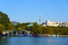 Shinobazu Pond and Tokyo Skytree. Shinobazu Pond of the Ueno Park and the Tokyo Skytree in Tokyo, Japan Stock Images