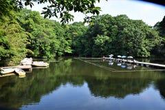 Shinseiko-lake/japan Hdano-city Royalty Free Stock Photography
