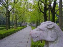 shinto fotografie stock libere da diritti