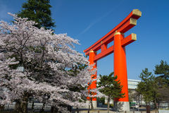 Shinto arch in Kyoto Royalty Free Stock Photography