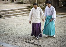 Shinto Priest Attending Zen Garden Royalty Free Stock Photography