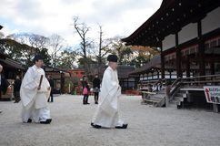 Shinto priests prepare for the praying ceremony in Shimogamo Shrine in Kyoto. KYOTO, JAPAN - DEC 09: Shinto priests prepare for the praying ceremony in Shimogamo royalty free stock photography