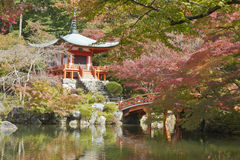 Shinto red garden Stock Images