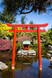 Shinto shrine in a public park. A Japanese garden featuring pools, a waterfall, a footbridge, sakura cherry trees, and an authentic Shinto shrine and Tori Gate stock photography