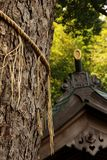 Shinto Shrine Stock Photo