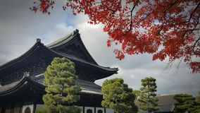 a shinto temple in kyoto japan Royalty Free Stock Photos