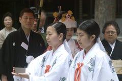 Shinto wedding, Tokyo, Japan. Shinto priests preparing for a wedding in Meiji Shrine, Tokyo, Japan royalty free stock images