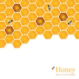 Shiny amber honey comb and bees background design. Vector natura. L apiary and beekeeper template Royalty Free Stock Images