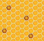 Shiny amber honey comb and bees seamless pattern design. Vector Stock Images