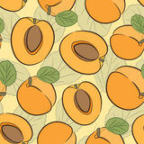 Shiny apricot pattern Stock Image