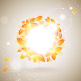 Shiny autumn background Royalty Free Stock Images