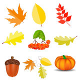 Shiny Autumn Natural Icons  Vector Illustration Stock Photo