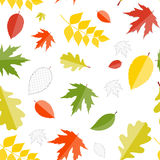 Shiny Autumn Natural Leaves Seamless Pattern Stock Photo