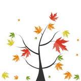Shiny Autumn Natural Tree Background. Vector Stock Photos