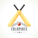 Shiny bats and red ball for Cricket. Royalty Free Stock Images