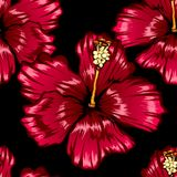 Tropical pattern with red royal flowers. Shiny and beautiful red tropical flowers. Love, exotic, smell of ocean. This is the topic of my perfectly repeated Vector Illustration