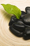 Shiny black stones and a leaf in a bowl Royalty Free Stock Photography