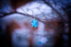 Shiny blue hanging Christmas Tree Ornaments at sunset Royalty Free Stock Images