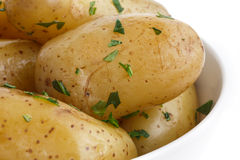 Shiny boiled small potatoes with parsley in bowl. Royalty Free Stock Photo