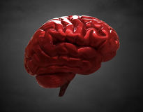 Shiny brain Stock Photo