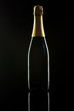 Shiny Champagne bottle Stock Photography