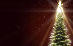 Shiny Christmas Tree Stock Images