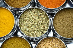 Shiny Circular Silver Bowls of Indian Spices and Seeds Royalty Free Stock Images