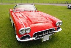 Shiny corvette. On green grass Stock Images