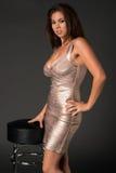 Shiny dress Royalty Free Stock Images