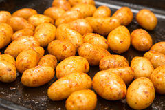 Shiny fresh, oiled potatoes on an oven plate Royalty Free Stock Photo