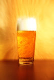 Shiny glass of beer Royalty Free Stock Image
