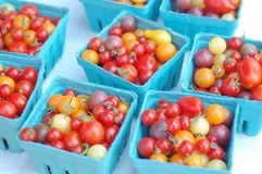 Shiny grape tomatoes Stock Images