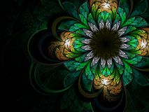 Shiny green fractal flower Royalty Free Stock Photography