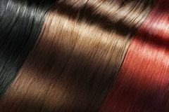 Shiny hair color. Set of different long shiny hair color Stock Image