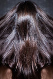 Shiny hair in motion Stock Images