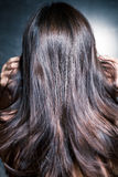 Shiny hair in motion Royalty Free Stock Photography