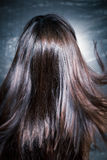 Shiny hair in motion royalty free stock photos
