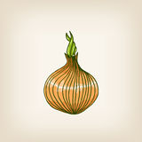Shiny hand drawn onion Royalty Free Stock Photography