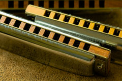 Shiny Harmonicas Stock Images