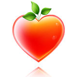 Shiny heart. Royalty Free Stock Images