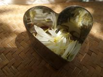 Shiny heart full of falling white petals. See through heart on bamboo weaven mat stock photography
