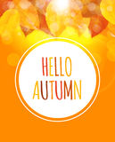 Shiny Hello Autumn Natural Leaves Background. Vector Illustration. EPS10 Stock Image