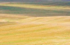 Shiny hilly stubble field Stock Image