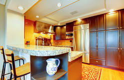 Shiny kitchen with black wood cabinets and steel appliances Stock Images