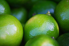 Shiny lime. At the market Royalty Free Stock Photo