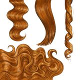 Shiny long red, fair straight and wavy hair curls. Set of shiny long red fair straight and wavy hair curls, sketch style vector illustration isolated on white vector illustration