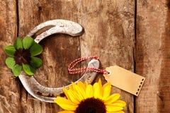 Shiny metal horseshoe with an Irish shamrock Stock Photos