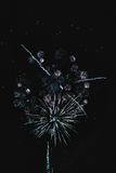 Shiny natural fireworks. On dark black sky background with a little smoke Stock Image