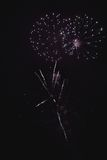 Shiny natural fireworks. On dark sky background with little smoke Royalty Free Stock Photo
